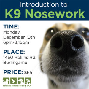 Introduction to K9 Nosework Class @ Peninsula Humane Society & SPCA