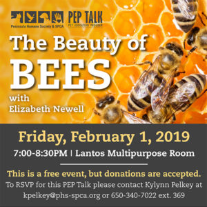 PEP Talk: The Beauty of Bees @ Peninsula Humane Society & SPCA